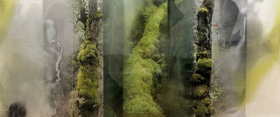 Janet Laurence, 'Sacred Green chlorophyll collapse series', ca. 2017