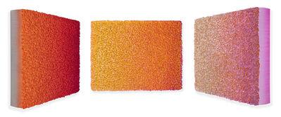 Zhuang Hong Yi, 'Flowerbed Colour Change #S20-81', 2020