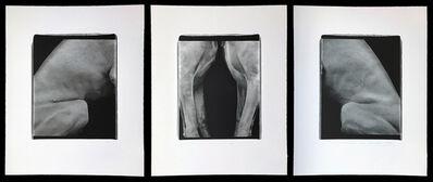 "William Wegman, '""Two in Three"" (triptych)', 1998"