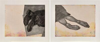 Kiki Smith, 'Still; Home', 2006