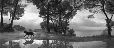 Pentti Sammallahti, 'Cilento , Italy', 1999