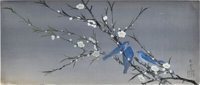 Kakunen Tsuruoka, 'Three Bluebirds on Blossoming White Plum Branch', n.d., ca. 1920, 1930s