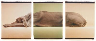 William Wegman, 'Green Caramelle', 1998