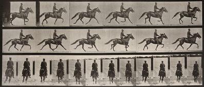 Eadweard Muybridge, 'Animal Locomotion: Plate 593 (Man Riding Cantering Horse)', 1887