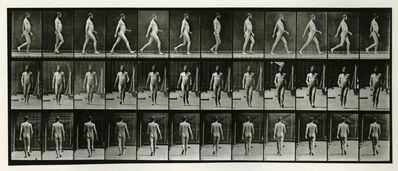 Eadweard Muybridge, 'Animal Locomotion #389', 1887
