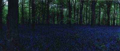 Chrystel Lebas, 'Blue Hour, Untitled #1', 2005