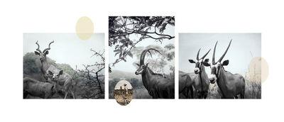 Ian van Coller, 'Antelope', 2003