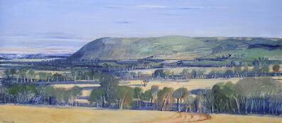 Michael Shannon, 'Mt Ida', 1985