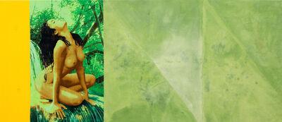 Alexandre da Cunha, 'Amazons (Painting VI)', 2014