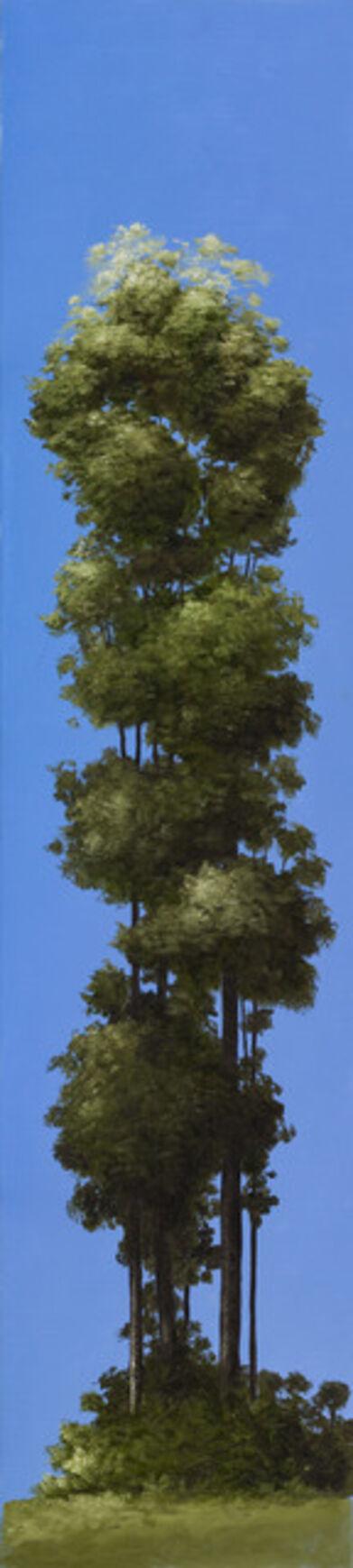 Pedro Ruiz, 'Trees', 2019