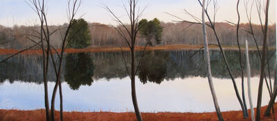 Elissa Gore, 'November Pond', 2008
