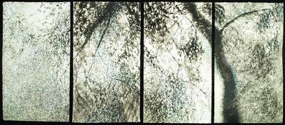 Willa Cox, 'Peach Tree Shadows, No. 7', 2009