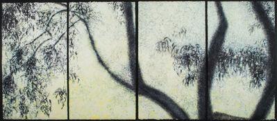 Willa Cox, 'Peach Tree Shadows, No. 8', 2009