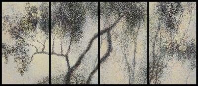 Willa Cox, 'Peach Tree Shadows, No. 12', 2011
