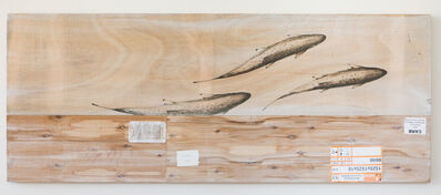 Joseph Rossano, 'EDNA: Salmo salar (Atlantic Salmon) #2', 2018