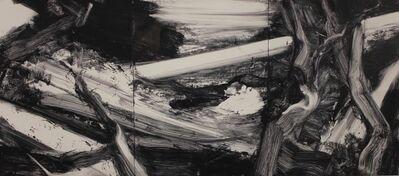 Robert Zandvliet, 'Untitled- 11-10.19.99', 1989