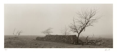 Kerik Kouklis, 'Trees and Stone Foundation, Sacramento County, CA', 1997