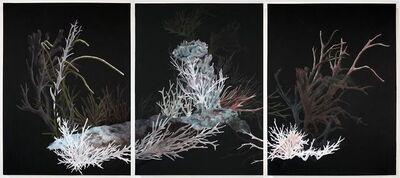 Resa Blatman, 'Bleachy Reef', 2017