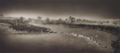 Nick Brandt, 'Zebras crossing river, Maasai Mara', 2006