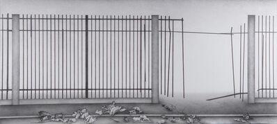Zhang Dun, 'Fence 1', 2013