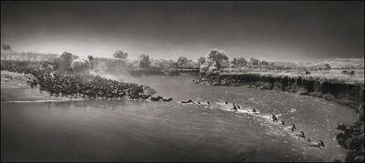 Nick Brandt, ''Zebra River Crossing' Masai Mara', 2006