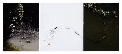 Sandi Haber Fifield, 'Untitled (LF16#113)', 2016