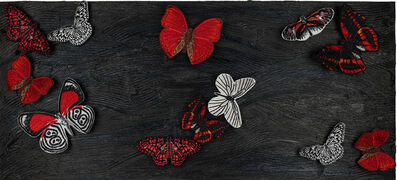 Stephen Wilson, 'Midnight Butterfly Study', GFA1146