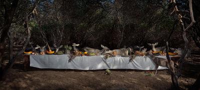 Claire Rosen, 'The Deer Feast', 2014