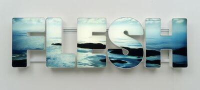 Doug Aitken, 'Flesh', 2012