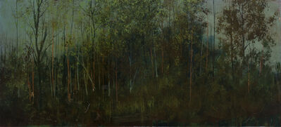Peter Hoffer, 'Untitled (Dark Forest)'