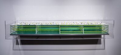 Katsumi Hayakawa, 'See from the Side 3', 2014