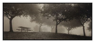 Kerik Kouklis, 'Bench and Trees in Fog, Tilden Park, Oakland, CA', 1995