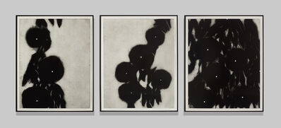 Donald Sultan, 'Morning Glories (Triptych)', 1991