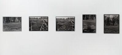David Hall, 'Richmond Park Series', 1967-1968