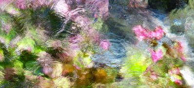 Larry Garmezy, 'The Garden Below #2 - Abstract / impressionist water photography, waterscape, natural abstraction, Rocky Mountains, in green, pink, and blue', 2019