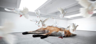 Fabian Bürgy, 'Dead fox', 2014