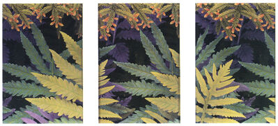 Maria Muller, 'Ferns and Firs', 2000