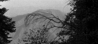 John Skoog, 'Shadowland', 2014