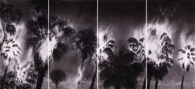 Gonzalo Fuenmayor, 'Tropicalypse', 2017