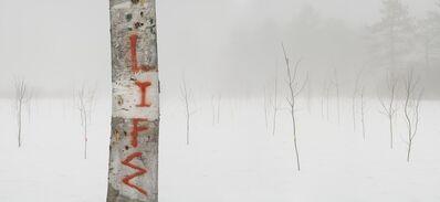 Bill Anderson, 'Life', 2008