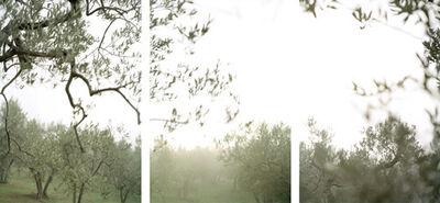 Joann Verburg, 'Crazy Fog (Nebbia Pazza)', 2008