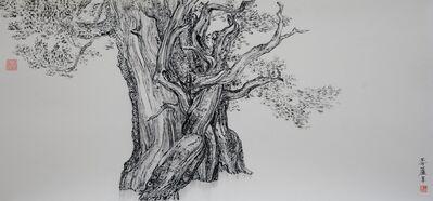 Wang Mansheng 王满晟, 'The Wind of Pine 松風', 2016
