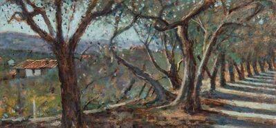 Clive McCartney, 'Olive Trees, Capri', 2019