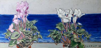 Joseph Plaskett, ' Two Cyclamen & Sea', 2003