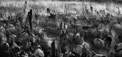 David Yarrow, 'Mankind III', 2015