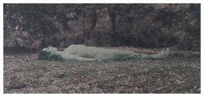 Juana Gomez, 'Endosimbiosis, Bordado a mano y fotografía sobre lino, 240 x 110, 2016', 2016