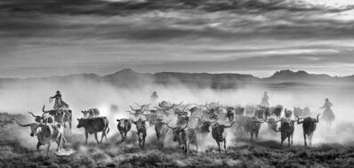 David Yarrow, 'The Thundering Herd', 2021