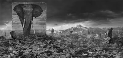 Nick Brandt, 'Wasteland with Elephant', 2015