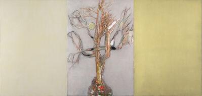 Markus Konttinen, 'Old Tree And The Sun', 2020
