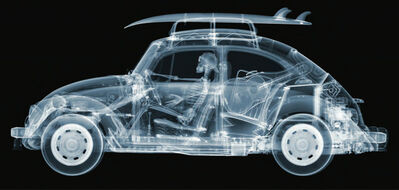 Nick Veasey, 'California Bug', 2015